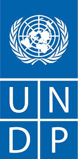 UNDP careers